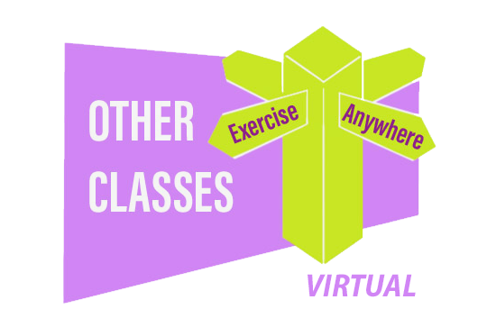 Exercise Anywhere - Virtual