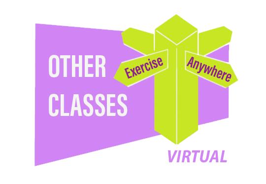 Exercise Anywhere - Virtual